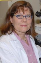 Heidi Stuhlmann, Ph.D.